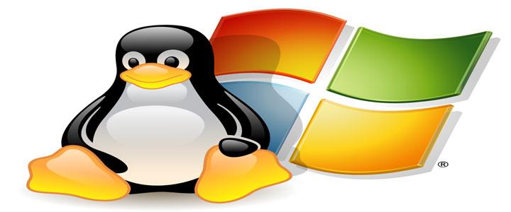 linux windows hosting